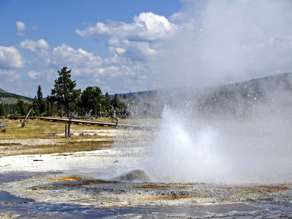 volcanic geyser in Yellowstone National Park