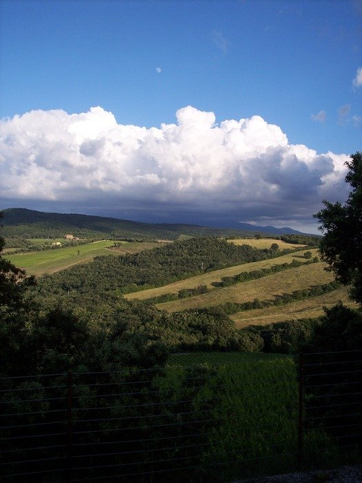 a bird's eye view wineries in Tuscany