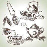 Hand drawn sketch vector tea set N16