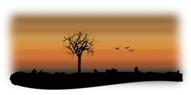 silhouettes of a tree and flying birds at sunset