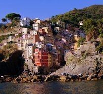 colorful houses in the rocks in Riomaggiore, Italy