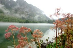 foggy mountain lake in morning