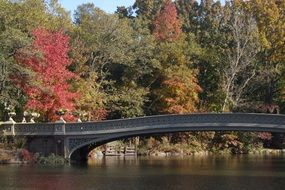 bridge over the river in a picturesque autumn park