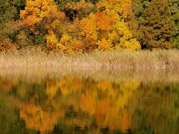 reflection of a colorful autumn forest in a lake