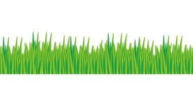 graphic drawing of green grass
