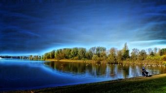 panorama of a forest lake under a bright blue sky