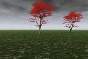 trees with red leaves in the field
