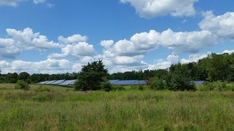 solar panels in the meadow