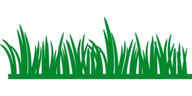 graphic green grass