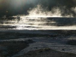 hot spring in Yellowstone National Park, Wyoming