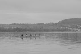 Black and white photo of Lake Constance