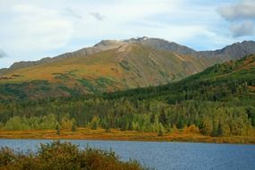wild autumn landscape in alaska