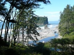 view of the coastline of the Pacific Ocean in the Olympic National Park, Washington