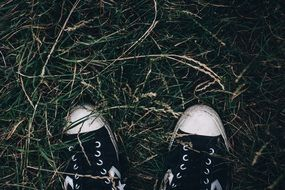 black and white sneakers on the autumn ground