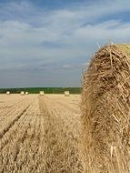 straw bales stubble harvest time