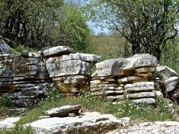 natural stone wall on a summer day