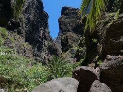 Masca is a small mountain village on the island of Tenerife