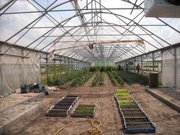 architecture greenhouses