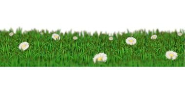 computer image of chamomile field