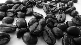 aromatic coffee in beans