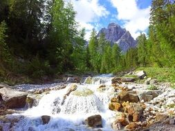 scenic mountain and foamy water flow on rocky bed in forest, italy, south tyrol