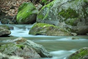 green rocks in water stream