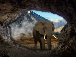 the elephant at the cave entrance