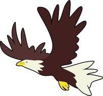 Clipart of bald eagle bird