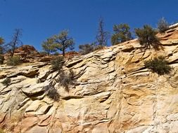 Rock erosion in zion national park