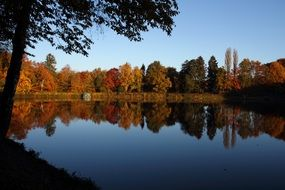 calm quiet lake with autumn forest