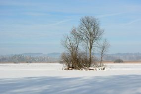 Winter landscape in the Chiemgau