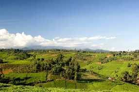 panoramic view of the countryside in kenya