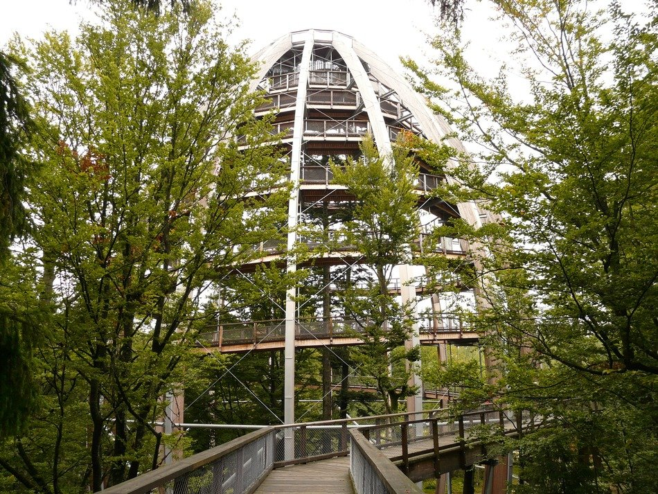lookout tower in the spiral form in the trees