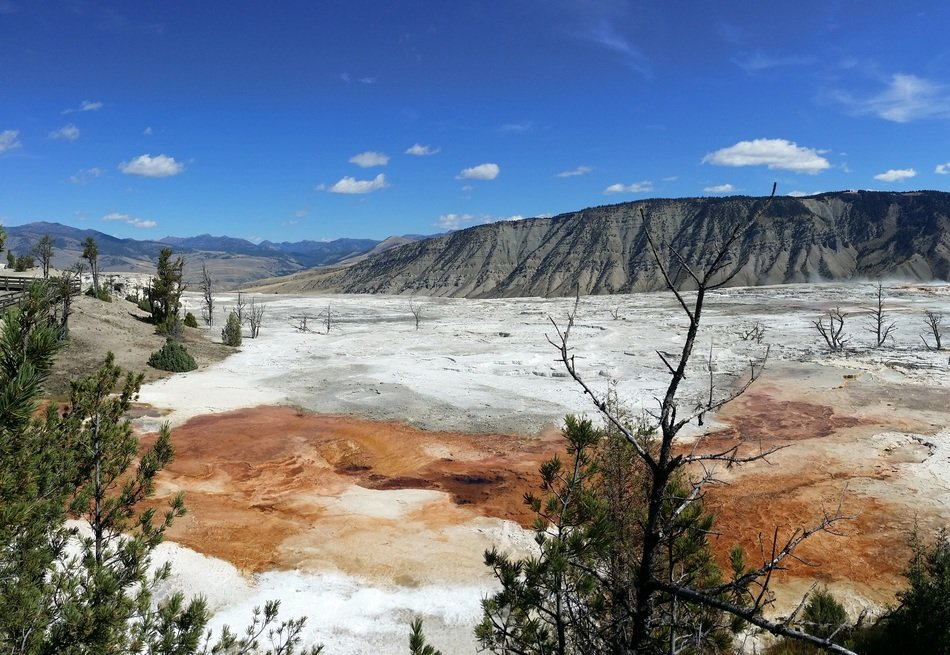 natural hot springs in Yellowstone National Park