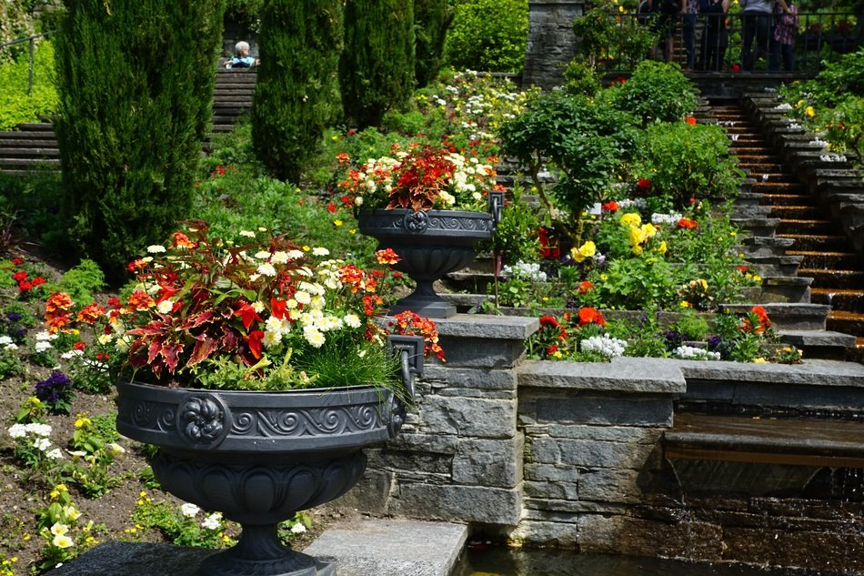 landscape of garden colorful flowers in big stone pots