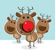 Reindeer with Clown's Red Nose in front of Herd
