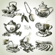 Hand drawn sketch vector tea set N23