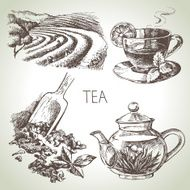 Hand drawn sketch vector tea set N24