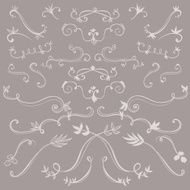 Hand Drawn Floral Design Elements N6