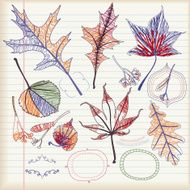 Set of Autumn Leaves (Doodle)
