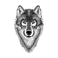 Dotwork tattoo design stylized Wolf face Hand Drawn doodle vect