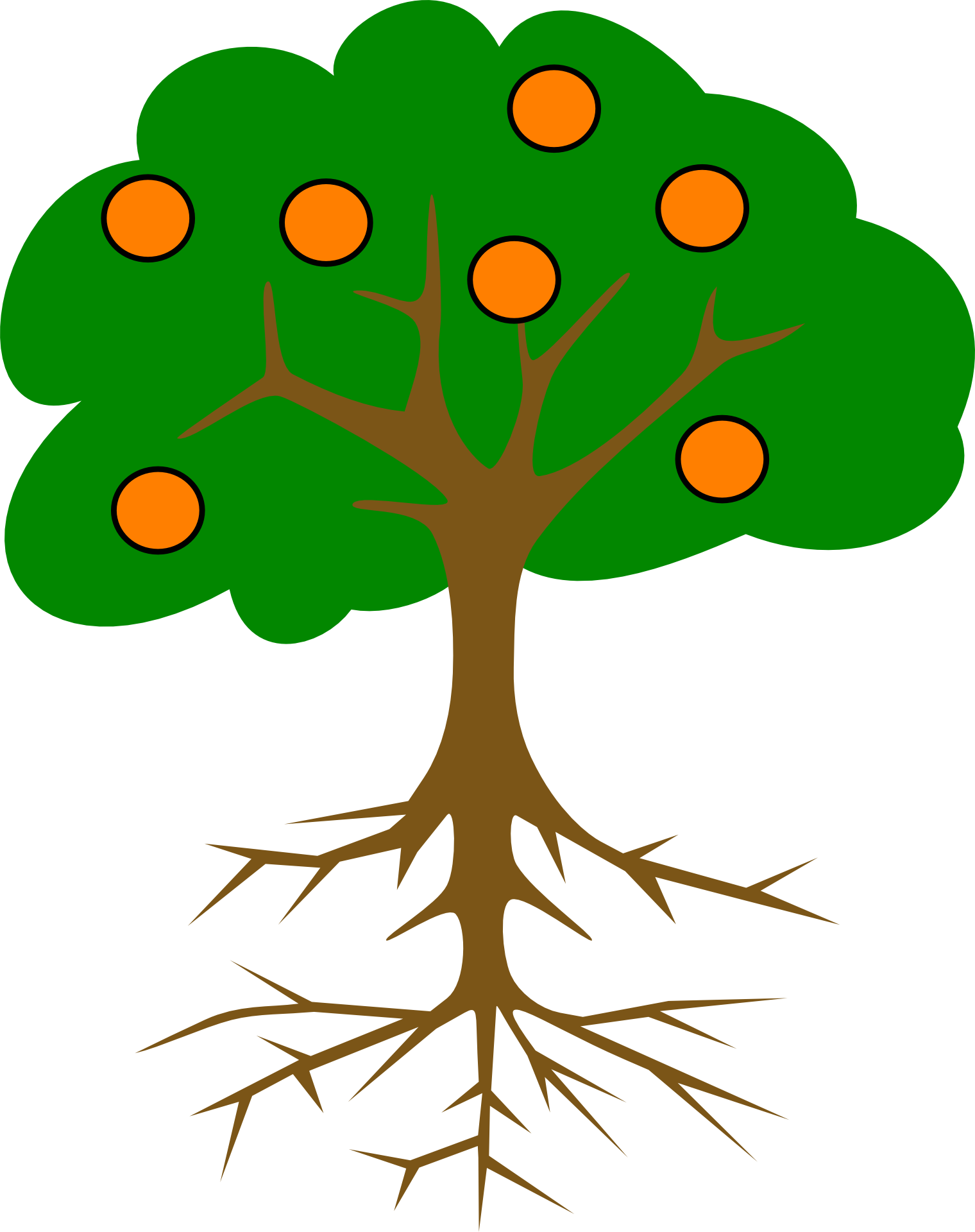 Drawing of an orange tree with roots free image