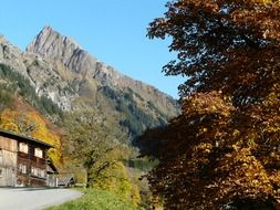 the house and the road at the foot of the Alps in Germany