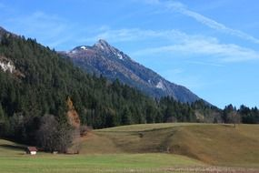 mountains with forest austria landscape