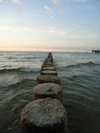 wooden piles in the Baltic Sea
