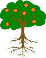 drawing of an orange tree with roots