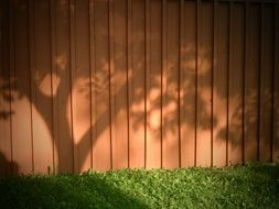 shadow of trees on a fence in the garden
