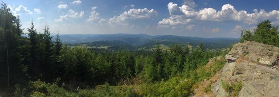 Green forest mountain panorama