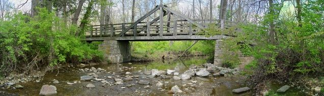 small wooden bridge over a forest stream