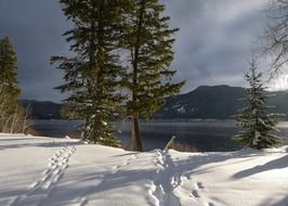 winter scenery on canim lake in British Columbia